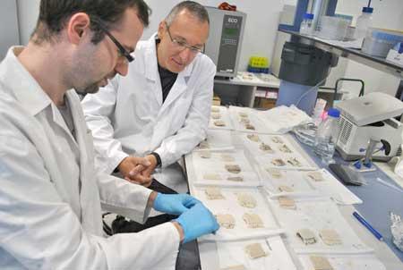 Los investigadores Carlos Díaz y Tzanko Tzanov, investigador del Grupo de Biotecnología Molecular e Industrial de la UPC, con muestras de alfombra ecológica.