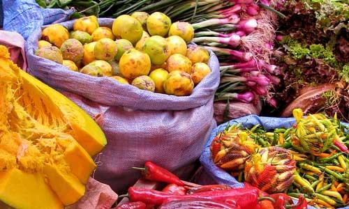 Alimentos bolivianos